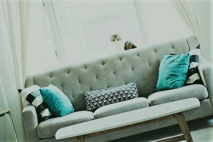 Canapé BZ : la bonne alternative dans un petit appartement