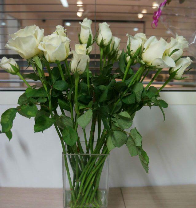 Quelles fleurs pour décorer ma maison ?